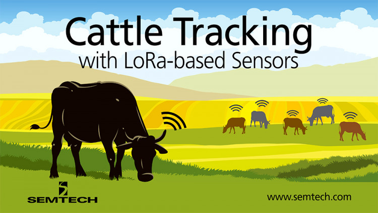 Semtech LoRa Technology and Chipsafer Connects Cattle Ranching to the Cloud Chipsafer's cattle tags allow ranchers to monitor vital signs